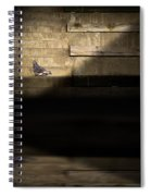 Il Piccolo Guardiano Spiral Notebook