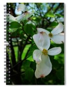 Illinois Capitol Dogwood Spiral Notebook