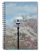 Illuminating Blossoms Spiral Notebook