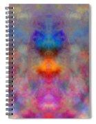 Illusion Spiral Notebook