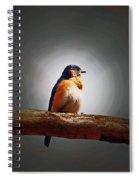 I'm A Bluebird And I'm Beautiful Spiral Notebook