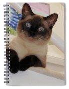 I'm Adorable Spiral Notebook