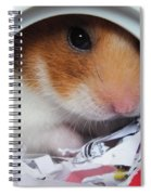 I'm Keeping My Eye On You Spiral Notebook