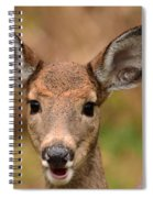 I'm Never Alone Spiral Notebook