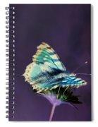 Imaginary Butterfly Spiral Notebook