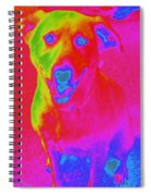 Imaginary Liberty The Dog Spiral Notebook