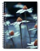 Imagine F03a Spiral Notebook