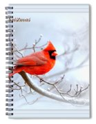 Img 2559-27 Spiral Notebook
