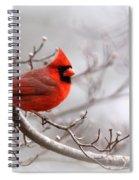 Img 2559-3 Spiral Notebook