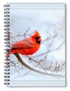 Img 2559-43 Spiral Notebook