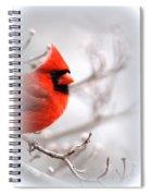 Img 2559-5 Spiral Notebook