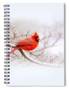 Img 2559-7 Spiral Notebook