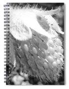 Immature  Spiral Notebook