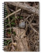 Immature White-throated Sparrow Spiral Notebook