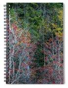 Immerse Spiral Notebook