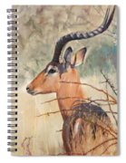 Impala Spiral Notebook