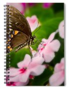 Impatient Swallowtail Spiral Notebook
