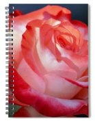Imperfect Rose Spiral Notebook