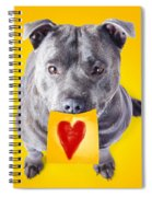 Imploring Staffie With A Sticky Note On His Mouth Spiral Notebook