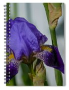 Impossible Imagined Iris Spiral Notebook
