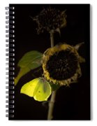 Impression At Night Spiral Notebook