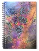 Impressionist Dreams 2 Spiral Notebook