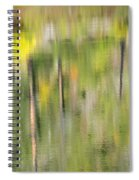 Impressions Of Autumn Spiral Notebook