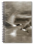In A Blur Of Feathers Spiral Notebook