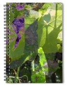 In A Dream Spiral Notebook