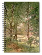 In A Fairy Woodland Spiral Notebook