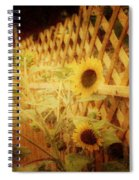 Sunflowers And Lattice Spiral Notebook
