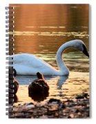 In A Stream Of Golden Light Spiral Notebook