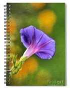 In All Her Glory Spiral Notebook