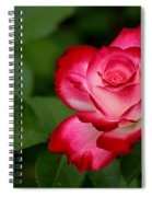 In All It's Beauty Spiral Notebook