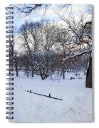 In Central Park Spiral Notebook