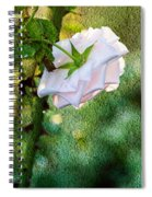 In Early Morning Light - White Rose Spiral Notebook