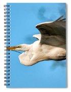In Flight With Stick Spiral Notebook