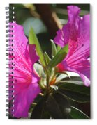 In Full Bloom Spiral Notebook