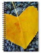 In Love ... Spiral Notebook