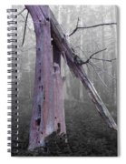 In Memory Of A Tree Spiral Notebook