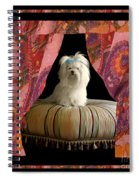 In Memory Of Ms Chloe - On Stage Spiral Notebook