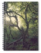In Our Own Little Magical World Spiral Notebook