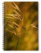 In Praise Of Grass 3 Spiral Notebook