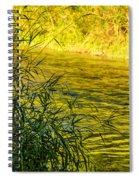 In Praise Of Grass Spiral Notebook