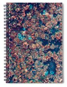 In Red Spiral Notebook