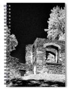 In Ruins Spiral Notebook