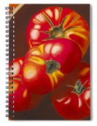 In Search Of The Perfect Tomato Spiral Notebook