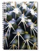 In Sharp Focus Spiral Notebook