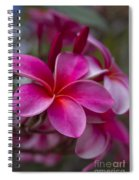 In The Beginning Of Time . . .  Spiral Notebook