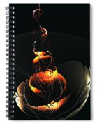 In The Dark Spiral Notebook